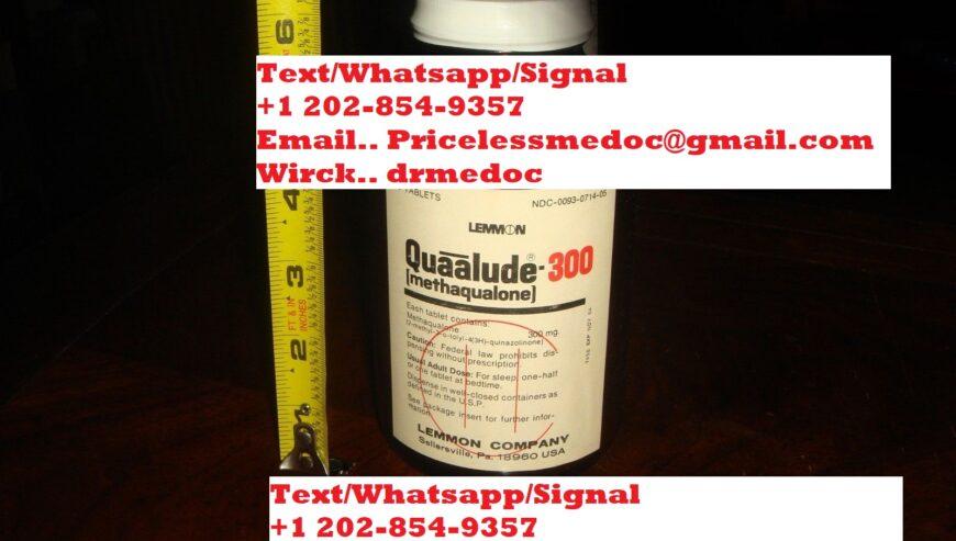 quaaludes4